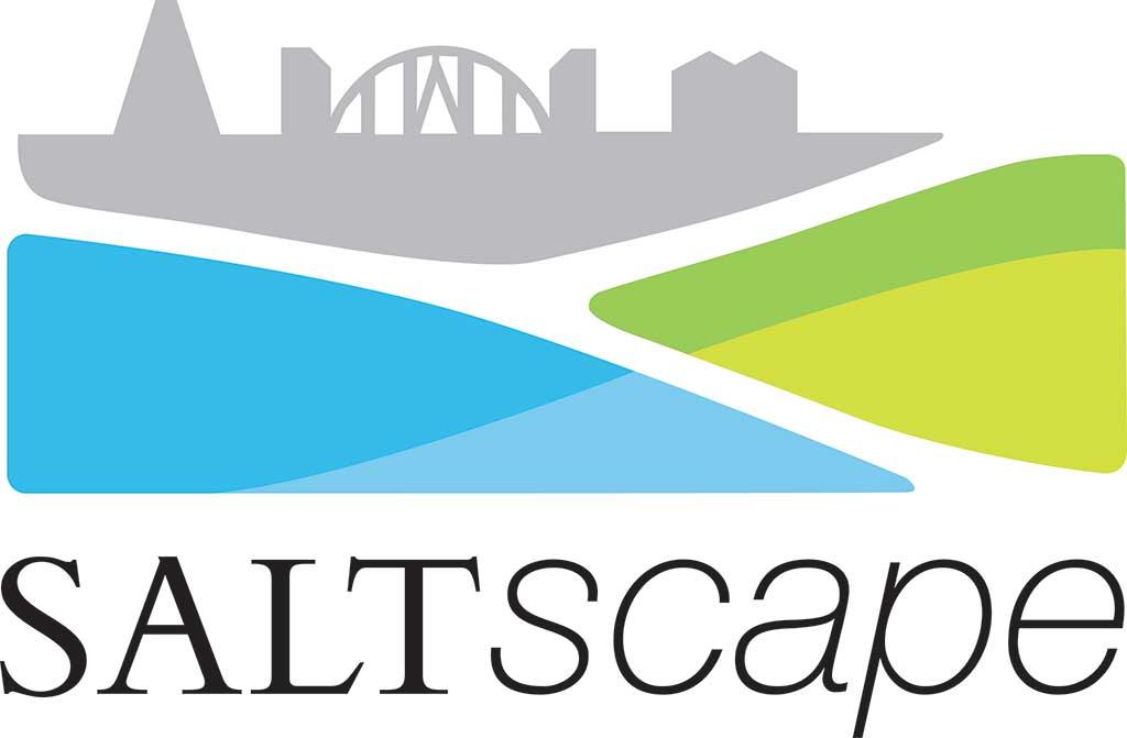 saltscape logo